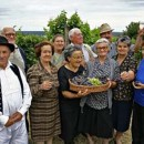 Elderly group grape gathering in Serbia