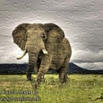 FREE Printable Jigsaw Puzzle: Elephant 1 (Small + Large Pieces)