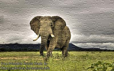 FREE Printable Jigsaw Puzzle: Elephant 1 (Small + Large Pieces). A majestic elephant standing tall alone outside on the grass.