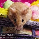 FREE Printable Jigsaw Puzzle: Hamster 1 (Small + Large Pieces). A super cute hamster face close up photo with pinkish flowers in the background.
