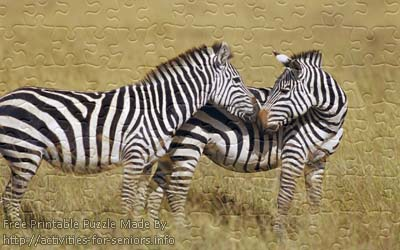 FREE Printable Jigsaw Puzzle: Zebra 2 (Small + Large Pieces). Two lovely zebras are enjoying outside with their noses touching one another.