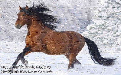 FREE Printable Jigsaw Puzzle: Horse 1 (Small + Large Pieces). A very beautiful and muscular looking brown horse caught while running in the snow.