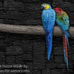 FREE Printable Jigsaw Puzzle: Parrot 1 (Small + Large Pieces)