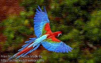 FREE Printable Jigsaw Puzzle: Parrot 2 (Small + Large Pieces). A gorgeous red and blue parrot in caught in flight with its wings wide open.