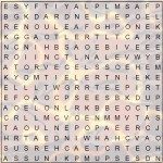 Word Search for Seniors – AUTUMN Puzzle