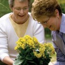 Gardening for Seniors | Activities for Seniors