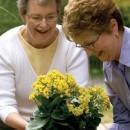 Gardening for Seniors | Activities for Seniors