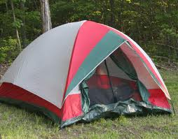 Camping Activities For The Elderly