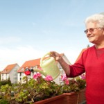 Group Activity Ideas for Low Level Seniors