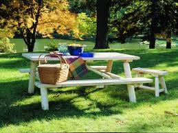 Activities For Seniors - Picnic Tips and Suggestions for Seniors
