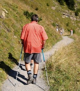 Using Walking Poles for Uphill and Downhill.jpg