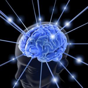 Short Term Memory Exercises for Seniors.jpg