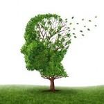 Causes for Long Term Memory Loss