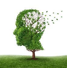 Causes for Long Term Memory Loss.jpg