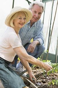 Activities for Seniors - Gardening